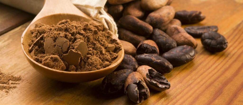 cacao-organico