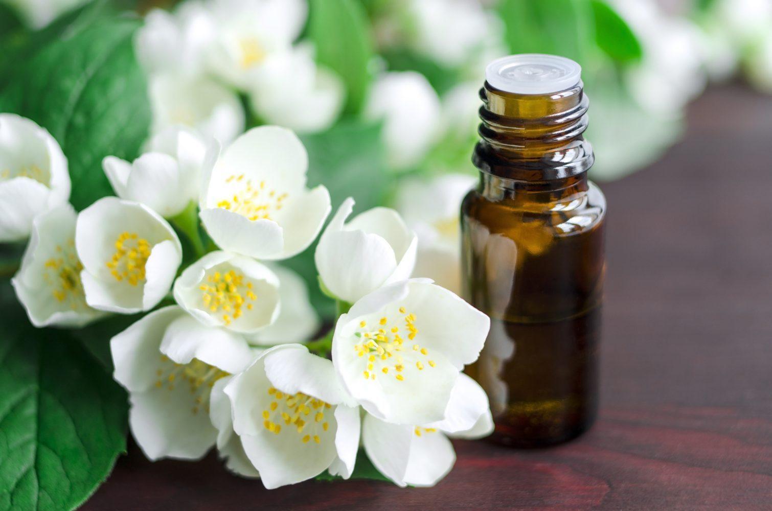 aroma a jazmín