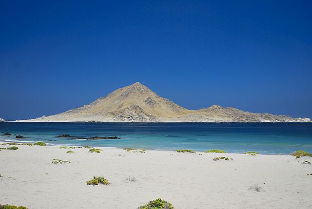 Playa Piqueros (Pan de Azúcar, Atacama)