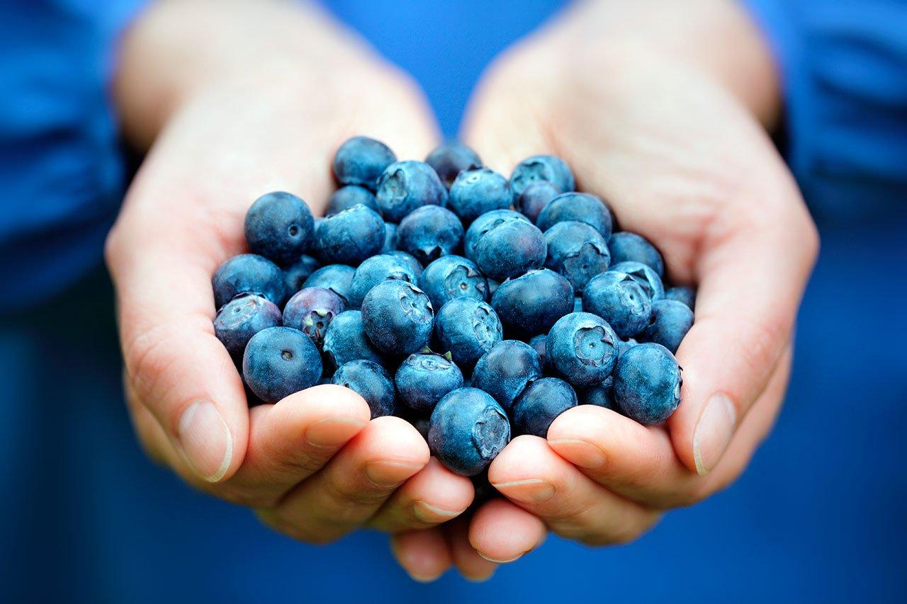 alimentos mejoran concentración memoria