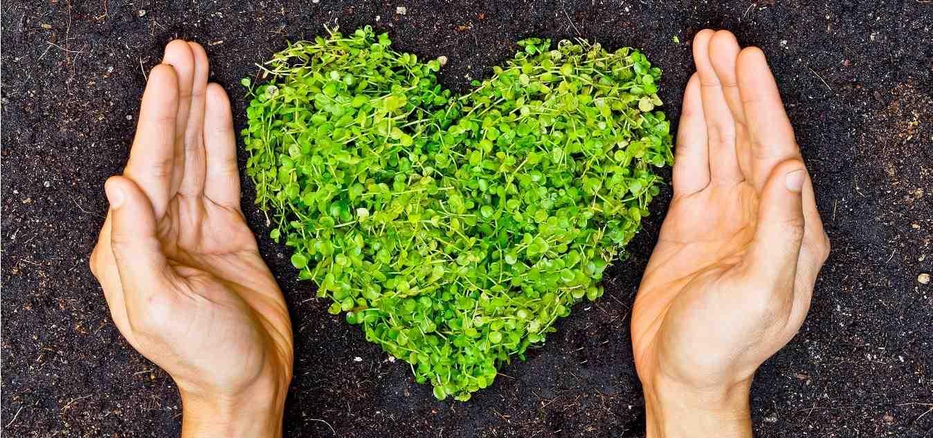 cuidar la tierra cambiando hábitos