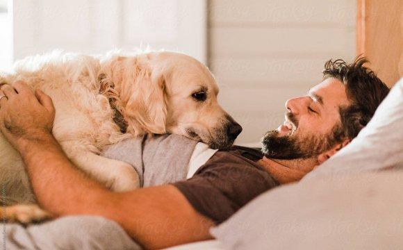 Una barba puede tener más gérmenes que un perro