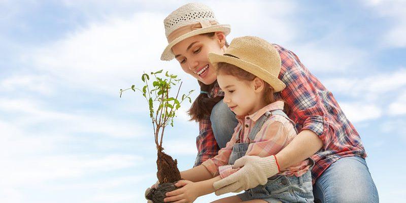 Amizades Que Devemos Cuidar Por Toda Vida: ¿Cómo Enseñar A Los Niños A Cuidar El Medio Ambiente?