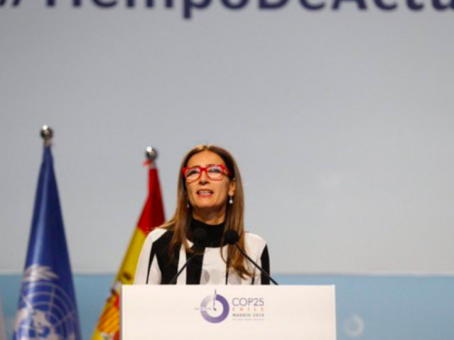 COP25 Ministra Schmidt