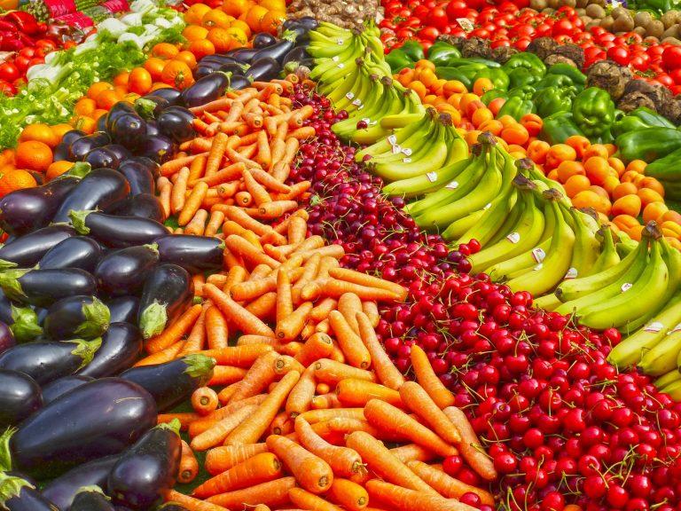 vegetarianismo y sustentabilidad