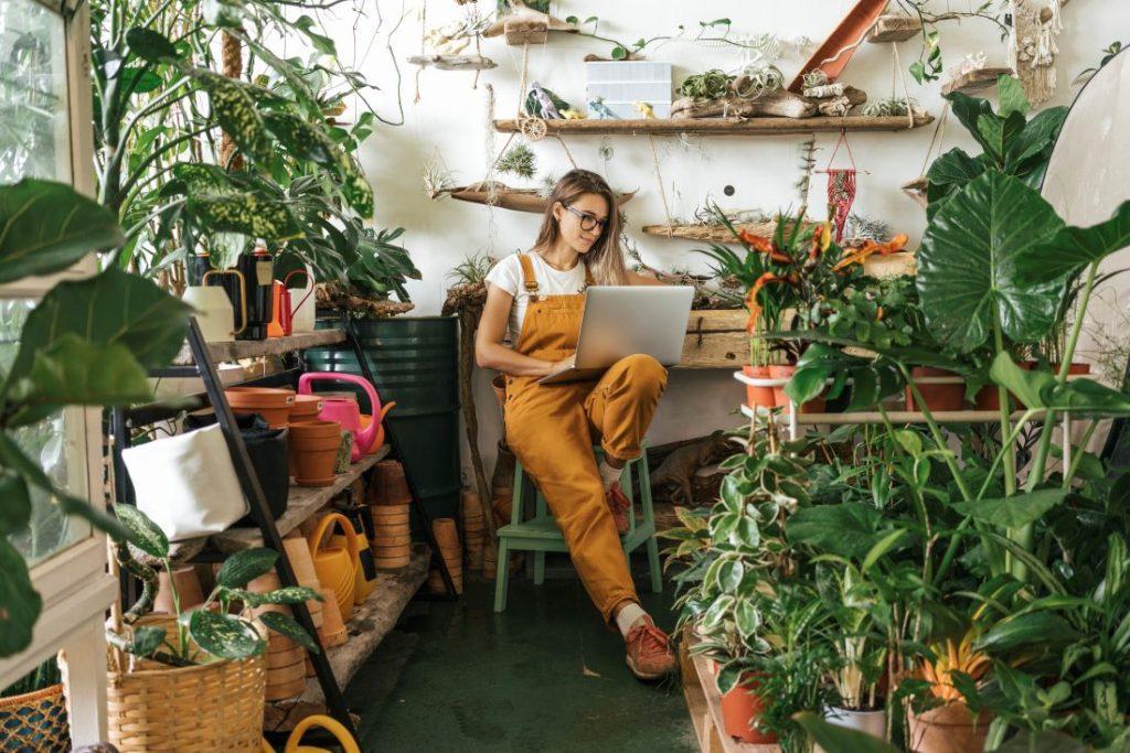 plantas estres