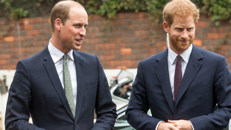 Principes Harry Y William