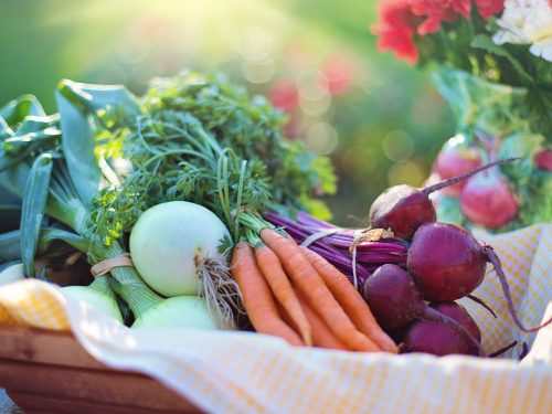 Alimentos Beneficiosos Para Tus Pulmones
