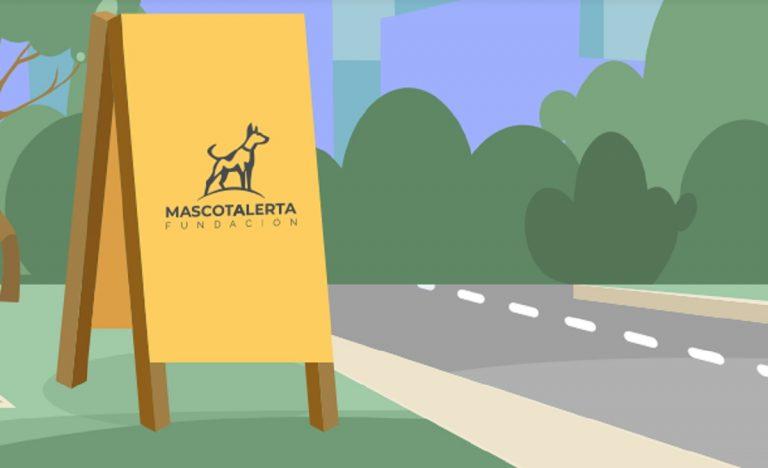 campaña para refugio de perros callejeros con palomas