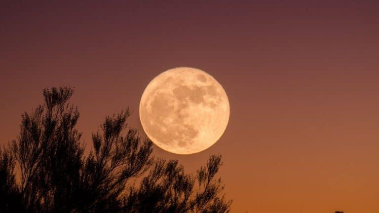 Superluna De Fresa ¿Cuándo Y Dónde Ver El Fenómeno Astronómico?