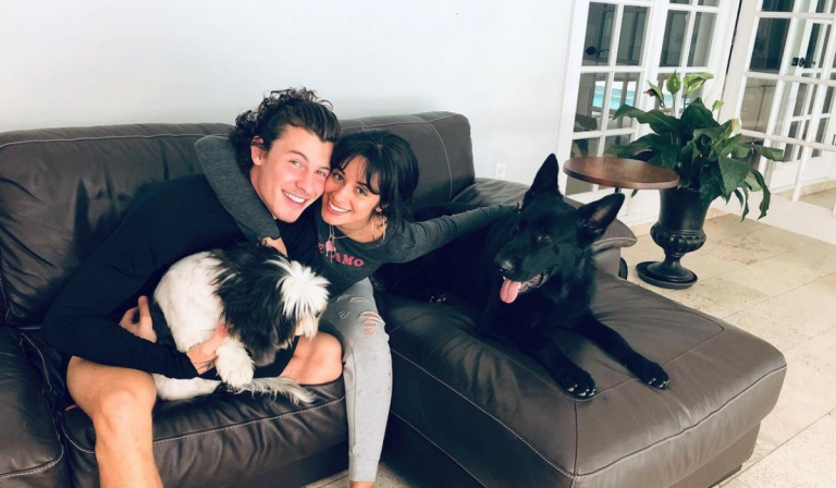 Camila Cabello Y Shawn Mendes Celebraron Dos Anos Juntos