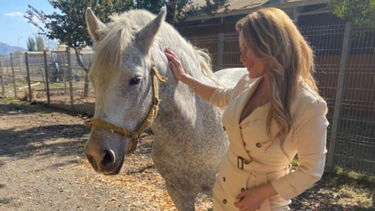 Cathy Barriga Aclara Que La Yegua Julieta Le Pertenece
