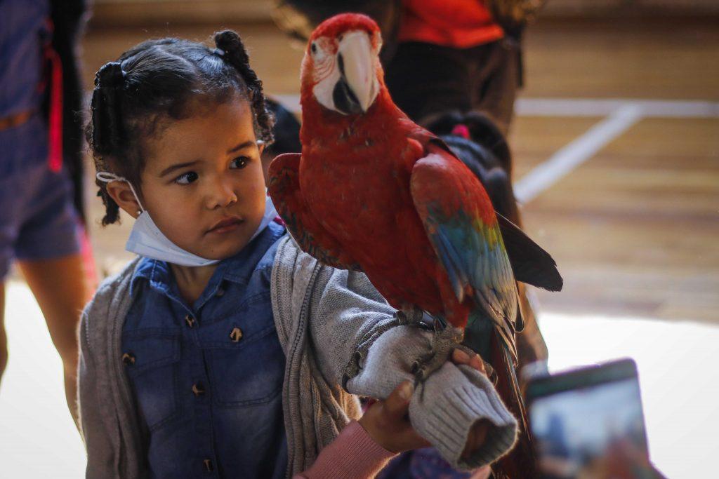 Día del Niño en Chile