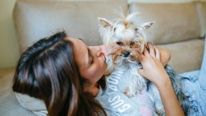 Hablar Con Tu Perro