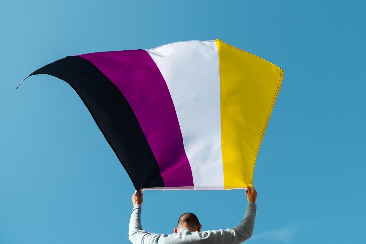 bandera que representa al genero no binario