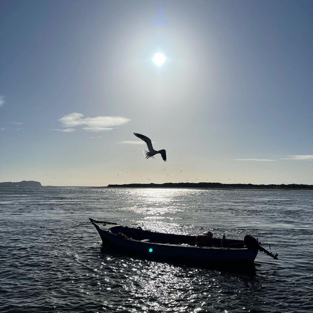 Fotos Del Periodista En Chiloe