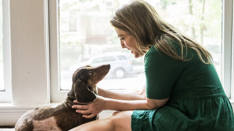 hablarle a las mascotas es signo de inteligencia