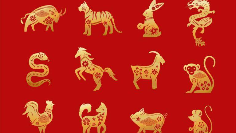 Horóscopo Chino animales que podrían casarse