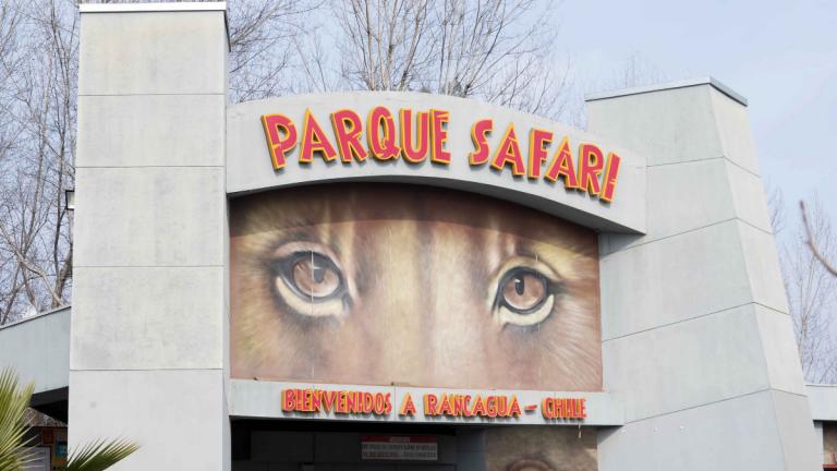 Parque Safari De Rancagua