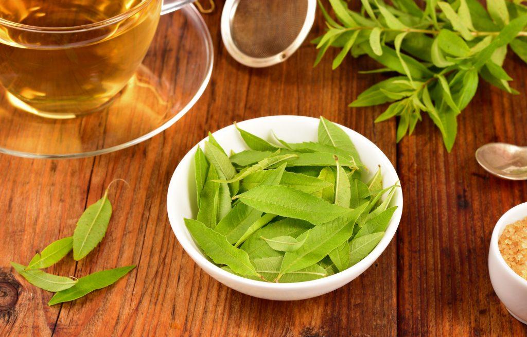 Uso del cedrón hierbas medicinales