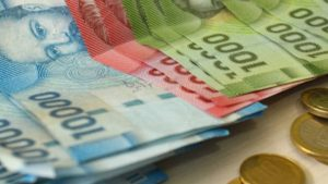 bonos económicos para la familia chilena