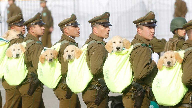 Parada Militar 2021