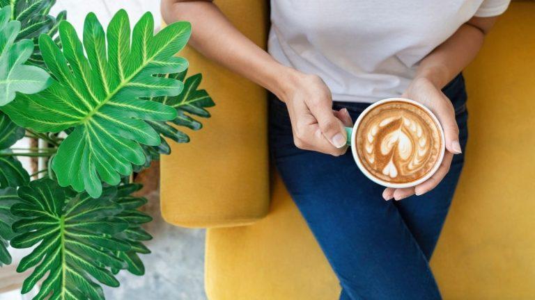 Cafe Recomendado Por Dia
